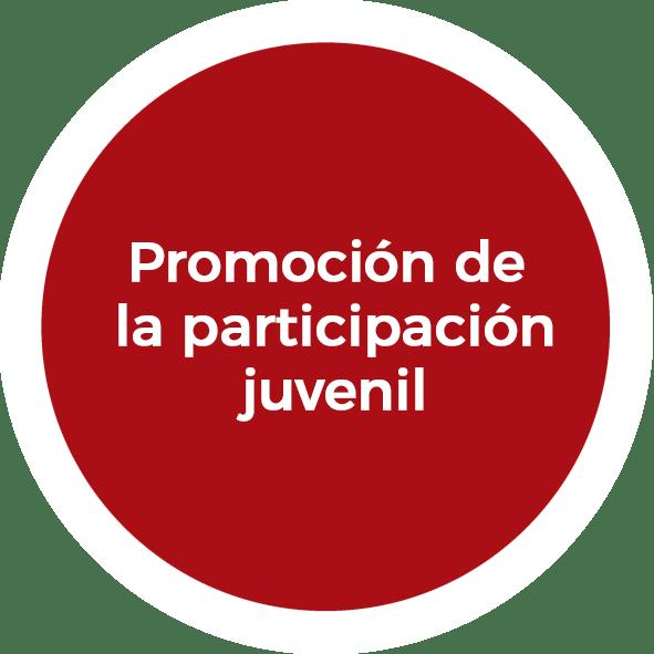 Promoción de la participación juvenil