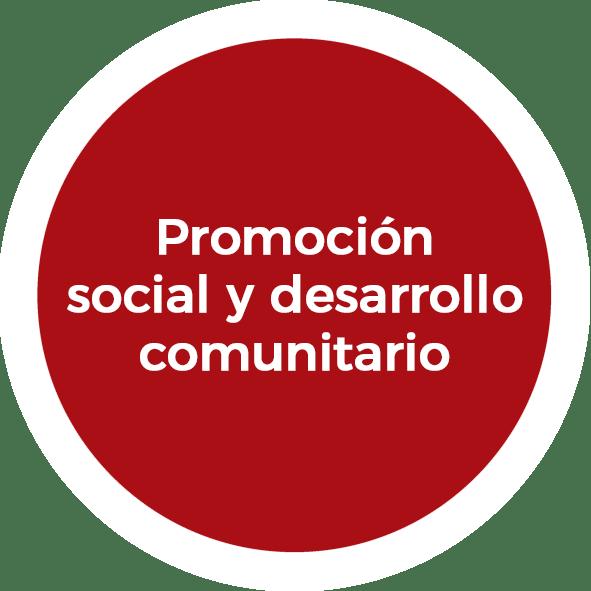 Promoción social y desarrollo comunitario